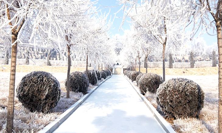 在最冷的季节,来龙生看最美的雪